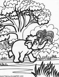 coloring pages of rainforest animals kids coloring