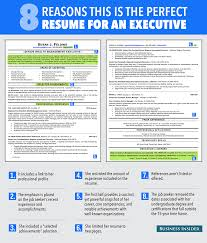 Career Overview Resume Examples by Writing Cv Summary