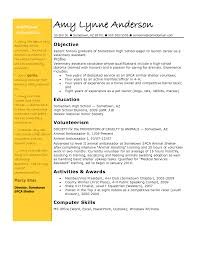Resume Samples Vice President Marketing by Resume Objective Examples Vice President Resume Ixiplay Free