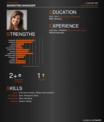 infographic resume builder