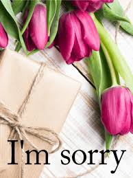sorry cards flowers for an apology i m sorry card birthday greeting
