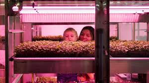 Ikea Hydroponics Garden Hydroponic Garden Concept Uses 90 Less Water Than A Regular Farm