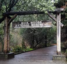 Muir Woods Map Tips For Visiting Muir Woods National Monument My Toronto My World