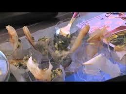 cuisiner la salicorne recette oeufs brouillés à la salicorne