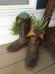 hens and planter i made out of coreys old cowboy boots
