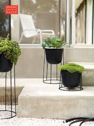wire planter planters architects and plants
