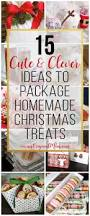 Cute Homemade Christmas Gifts by Best 25 Cookie Wrapping Ideas Ideas On Pinterest Cookie Gifts