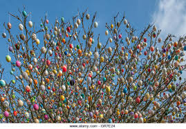 german easter egg tree easter egg tree easter egg tree germany stock photos easter egg tree