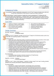 Resume Template It Library Resume Sample Chronological Resume Sample Academic
