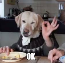 Ok Meme - meme creator ok dog meme generator at memecreator org