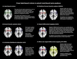 how to write a meta analysis research paper meta analytic methods for neuroimaging data explained biology of 13587 2011 18 moesm3 esm png