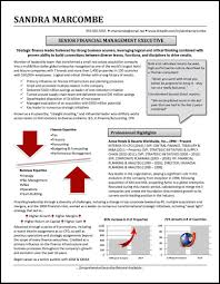 Finance Executive Resume Graphic Resume Profile Examples Distinctive Documents