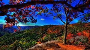 imagenes de otoño para fondo de escritorio fondos de pantalla bonitos para el otoño buscar pareja estable