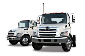 hino images reverse search