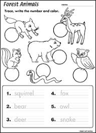 forest animals worksheet maple leaf learning library