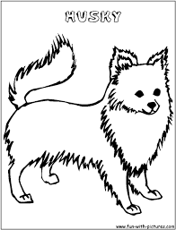 husky dog coloring pages cute husky coloring pages printable husky