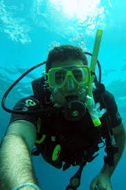 best 25 diving course ideas on pinterest scuba diving courses