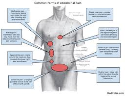 Right Side Human Anatomy Right Side Organs Right Left And Central Abdominal Pain