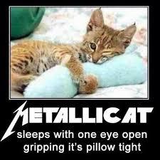 Heavy Metal Meme - simple heavy metal memes your wednesday metal meme nyc dueling