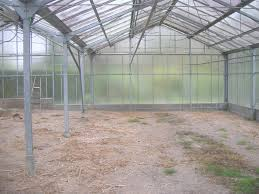 serre horticole en verre construire une serre en verre 15 la petite serre de jardin en