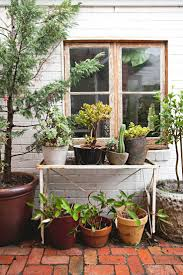 Herb Garden Planters by 371 Best Gardening Images On Pinterest Herbs Garden Plants And