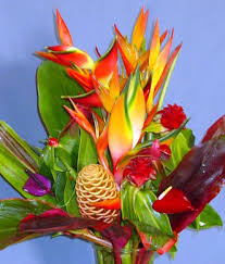 flowers direct order tropical flowers direct from kauai hawaii kalani tropicals