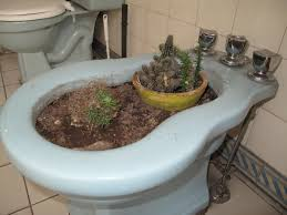 How To Use Bidet Toilet How To Use A Bidet Correlated In General 34 Percent Of People