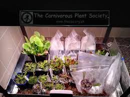 ikea led grow lights växer terraria cultivation u0026 equipment