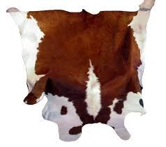 Calf Skin Rug 36 Best Cow Skin Rugs Images On Pinterest Cow Skin Cowhide Rugs