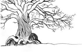 drawing of a tree by glowingtree on deviantart