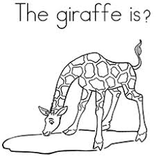 20 free printable giraffe coloring pages