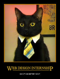 Business Cat Memes - image 146147 business cat know your meme