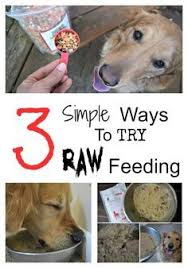 129 best dog health raw dog food diet images on pinterest dog