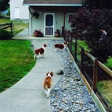 Garden Ideas For Dogs Garden Design Ideas Dogs