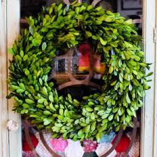 boxwood wreath preserved boxwood wreath knot shabby furnishings