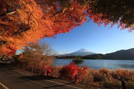 lakes lakeside autumn color road water trees fall red leaves lake
