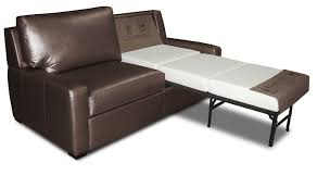 Leather Sleeper Sofa Bed Captivating Sleeper Sofa Bed Interiorvues
