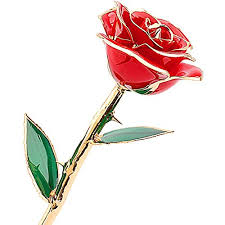 Long Stem Roses Mr Pro Brand Authentic Long Stem Rose Dipped In 24k Gold Best