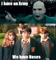 Harrypotter Meme - humor fun risa joke meme funny funny jokes comedy harry