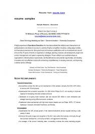 Build Resume Online by Resume Curriculum Vitae Templates Free Download How To Make A