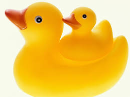 giant rubber duck wallpaper wallpapersafari