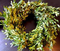 preserved boxwood wreath how to make a preserved boxwood wreath topiary bystephanielynn