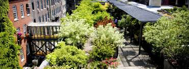 the roof garden u2013 401 richmond