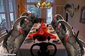 Funny Turkey Videos Thanksgiving Funny Thanksgiving Pictures Freaking News