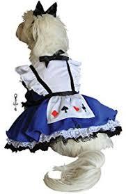Clock Halloween Costume Amazon Alice Wonderland Rabbit Dog Costume Bunny
