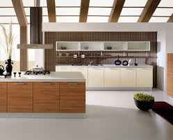 100 modern kitchen designs sydney kitchen designs u0026