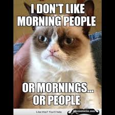 Morning People Meme - 30 very funny grumpy cat meme pictures and photos