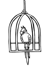 parrot cute bird cage coloring pages place color