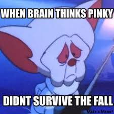 Pinky And The Brain Meme - i loved pinky the brain my nerdiness is showing pinterest