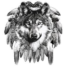 Wolf Indian Tattoos - wolf wolf pencil and in color wolf wolf
